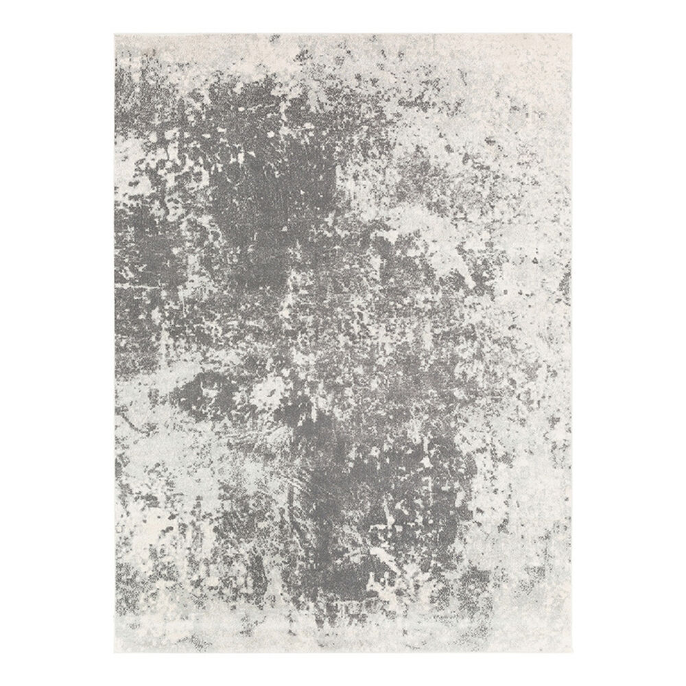 Rent to Own Surya Aberdine 9' x 12' Area Rug at Aaron's today!